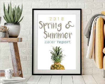 美国钻石涂料2018年春夏色彩趋势