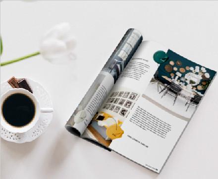 美国钻石涂料2019春季居家杂志