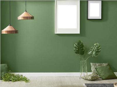 用绿色元素给空间注入新活力
