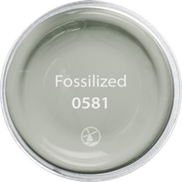 Fossilized - Color ID 0581