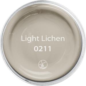 0211 Light Lichen
