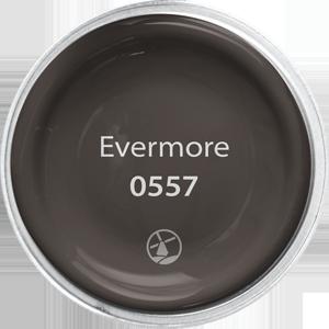 0557 Evermore